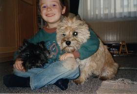 Foto 8 CAIRN TERRIER WELPEN: Harmonisches Hundeparadies seit 30 Jahren!!