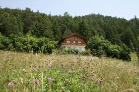 Chalet Majema in den Schweizer Bergen