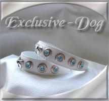 Foto 2 Chihuahua Prager Rattler Lederhalsband XS Halsband mit SWAROVSKI ELEMENTS