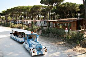 Foto 4 Club del Sole- Pineta sul Mare Camping Village-Italien