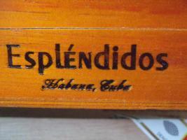 Cohiba Esplendidos - 25er Kiste - original aus Kuba