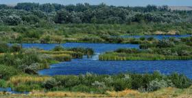 Foto 2 Company with 736 ha fish ponds suitable for tourism, acavacultura and agriculture in the Danube Delta, Romania.