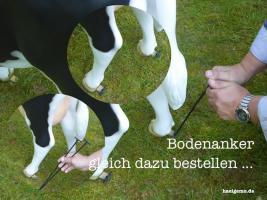 Foto 3 DASS KANN DEINE MELK KUH SEIN NE HOLSTEIN FÜR KINDER ..