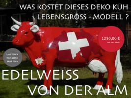 Foto 4 DEKO HOLSTEIN FRIESIAN KUH LEBENSGROSS UNSER HAUSEIGENES MODELL ...