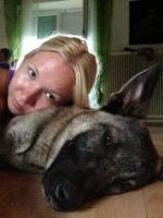 Foto 2 DRINGEND !! der Beschützer Max sucht sein zuhause für immer