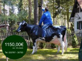 DUUUUUUU solltest mal jetzt bestellen ne Deko kuh Deco Cow ...