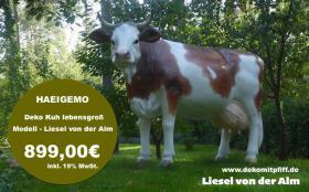 Foto 3 DUUUUUUU solltest mal jetzt bestellen ne Deko kuh Deco Cow ...