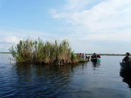 Foto 4 Das Donaudelta im Spätsommer