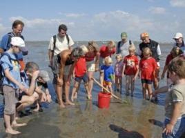 Foto 6 Das Nordseebad Dorum-Neufeld im Cuxland erleben: Urlaub am Nationalpark!