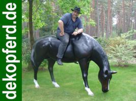 Foto 3 Deco Horse mit Hufeisen ….