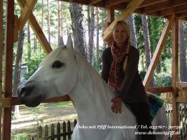 Foto 2 Deco Horse für Ihre Werbung...