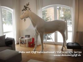 Foto 4 Deco Horse für Ihre Werbung...