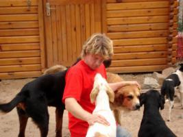 Foto 4 Dein Hundekindergarten