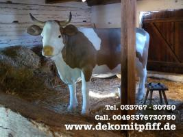 Foto 2 Deine Gattin möchte ne Deko Kuh gern im Garten haben… ja warum net eine Liesel von der Alm oder vielleicht doch …
