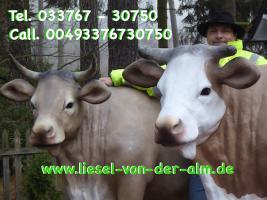 Foto 3 Deine Gattin möchte ne Deko Kuh gern im Garten haben… ja warum net eine Liesel von der Alm oder vielleicht doch …