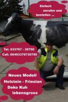 Foto 2 Deko Holstein - Kuh für Ihre Eventveranstaltung ...