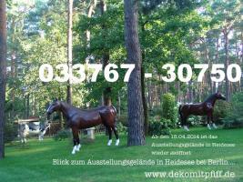 Deko Horse - Pferd lebensgross als Blickfang ... Tel. 033767 - 30750 - www.dekomitpfiff.de  oder www.dekopferd.de