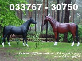 Deko Horse / Pferde lebensgross für Ihren Garten... www.dekomitpfiff.de anklicken