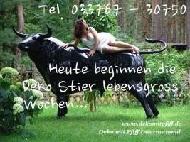 Foto 2 Deko Kuh oder Deko Pferd oder Deko Pony ....