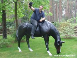 Deko Kuh oder Deko Pferde für Deinen Garten ...