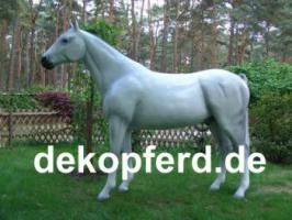 Foto 2 Deko Kuh oder Deko Pferde für Deinen Garten ...