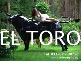 Foto 2 Deko Kuh oder Deko Stier oder Deko Bulle oder ?