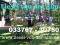 Deko Kuh Liesel von der Alm ... ja dann holen Sie sich diese Deko Kuh für Ihren Garten oder Schenken Sie diese Deko Kuh Ihren Schwiegereltern zum Hochzeitstag ...