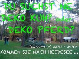Foto 4 Deko Kuh lebensgross Pustertaler Art ...