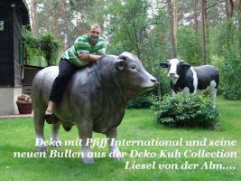 Deko Kuh lebensgross und dazu ein Deko Kälbchen ....