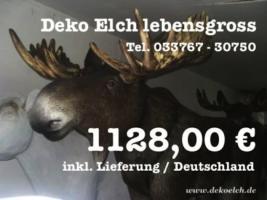 Foto 4 Deko Kuh lebensgross und dazu ein Deko Kälbchen ....