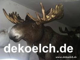 Foto 3 Deko Pferd für … oder doch lieber ...