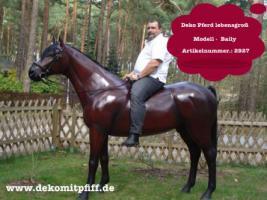 Foto 2 Deko Pferd zum aufsitzen … Tel. 03376730750