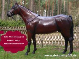 Foto 3 Deko Pferd zum aufsitzen … Tel. 03376730750