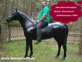 Foto 4 Deko Pferd zum aufsitzen … Tel. 03376730750
