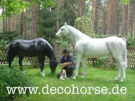 Foto 2 Deko Pferd oder deco Horse