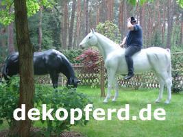 Foto 12 Deko Pferd findet man ...