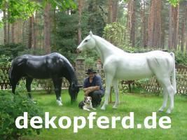 Foto 13 Deko Pferd findet man ...