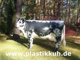 Foto 14 Deko Pferd findet man ...