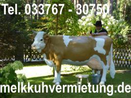 Foto 3 Deko Pferd lebensgroß - Modelle mieten - www.dekopferdvermietung.de Deko Melk Kuh lebensgroß - Modelle mieten - www.melkkuhvermietung.de / Deko Figuren lebensgroß - Modelle mieten - www.dekofigurenvermietung.de - Tel. 033767 - 30750 / Call. 00493376730750