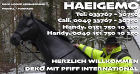 Foto 4 Deko Pferd lebensgroß - Modelle mieten - www.dekopferdvermietung.de Deko Melk Kuh lebensgroß - Modelle mieten - www.melkkuhvermietung.de / Deko Figuren lebensgroß - Modelle mieten - www.dekofigurenvermietung.de - Tel. 033767 - 30750 / Call. 00493376730750