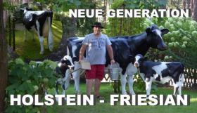 Foto 4 Deko Pferd & Deko Kuh zum aufsitzen gibts das ?????