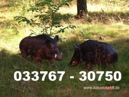 Deko Schweine für Ihren Garten ...