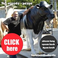 Deko holstein bullen und Kuh lebensgross haste beide noch nicht als deko …?