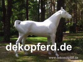 Deko kuh lebensgross und dann noch ein Deko Pferd dazu ok. ...