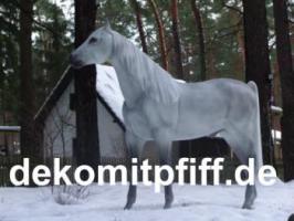 Foto 8 Deko kuh lebensgross und dann noch ein Deko Pferd dazu ok. ...