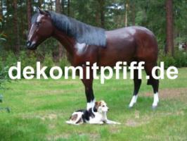 Foto 9 Deko kuh lebensgross und dann noch ein Deko Pferd dazu ok. ...
