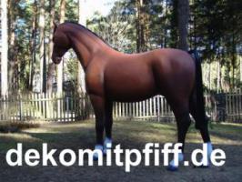 Foto 11 Deko kuh lebensgross und dann noch ein Deko Pferd dazu ok. ...
