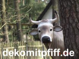 Foto 14 Deko kuh lebensgross und dann noch ein Deko Pferd dazu ok. ...