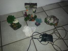 Foto 3 Dekoset ! Muschel mit Luftausströmer +Luftpumpe / kein Versand