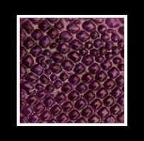 Design Tiles Violet